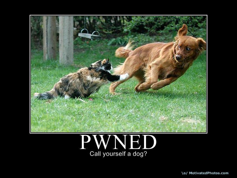 633770427812206895-pwned